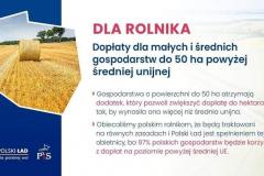 Polski-Lad-dla-Polskiej-Wsi-6